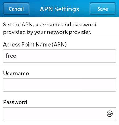 Free Internet APN settings for BlackBerry 10 screenshot