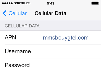 Bouygues  APN settings for iPhone 5S screenshot